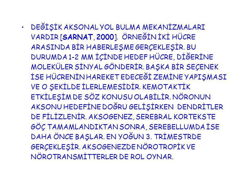 DEĞİŞİK AKSONAL YOL BULMA MEKANİZMALARI VARDIR [SARNAT, 2000]